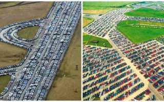 Кладбища новых автомобилей куда деваются непроданные машины