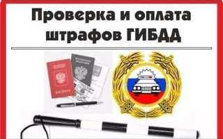 Проверка штрафов по документам