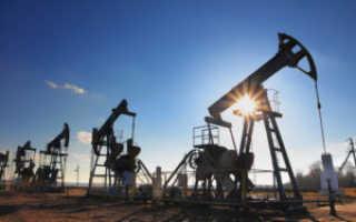Сколько из нефти можно получить бензина