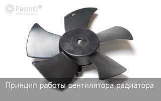 Мотор вентилятора охлаждения радиатора